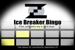 aIce-Breaker-Bingo